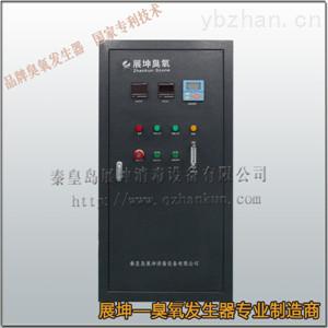 展坤ZCS-O/G小型臭氧发生器
