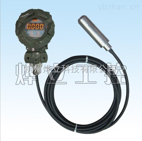 WMY-D-缆式带显示液位变送器/扩散硅静压投入式液位控制器/诚信通会员