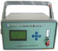 SXAT-101A型便攜式氧量分析儀