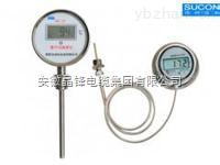 PT100数显温度计供应