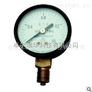 北京卓尔瑞华轴向径向真空压力表Y-100