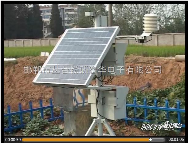 RYQ-4-现代农业田间气象无线视频小气候观测仪