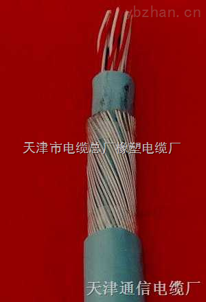 HPVV通信电缆价格