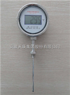 YPW-020數字顯示溫度計