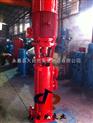 供應XBD10.0/11.6×80LGW立式單級離心消防泵 型號 XBD