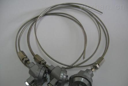 WZP2-121 WZP2-120-双支铂热电阻