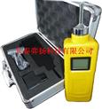 CY-Ex可燃氣體檢測儀(泵吸式)