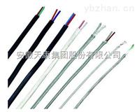 RVVPKX   RVVPEX天康熱電偶補償導線
