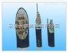 KFV22氟塑料控制电缆