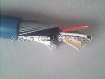 DJYVP32-钢丝铠装电缆,计算机控制电缆