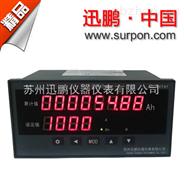 苏州迅鹏电镀行业用八位显示安时表