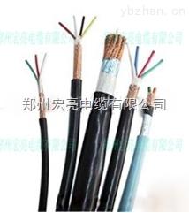 氟塑料绝缘DJFVP/DJFPVP计算机电缆