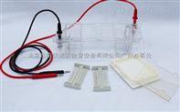 北京六一:DYCP-31CN型 瓊脂糖水平電泳儀(槽)(小號)