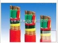 BPYJP3VP2-0.6安徽天康变频器电缆变频电缆