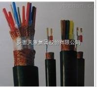 安徽天康阻燃计算机电缆使用场合