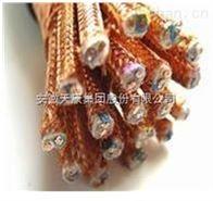 DJYJVP2-22,DJYP2V12*安徽天康計算機電纜