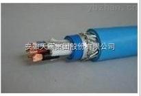 安徽天康本安型计算机电缆