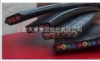 安徽天康橡套扁平电缆