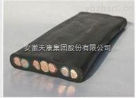 YFFB安徽天康弹性体绝缘及护套扁平软电缆