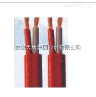 安徽天康耐寒电缆