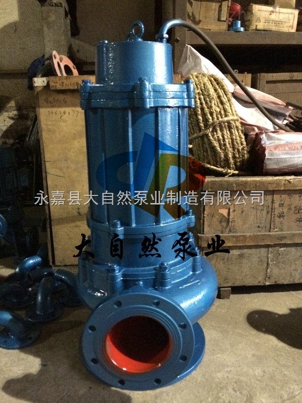 供应QW200-250-22-30耐腐蚀排污泵
