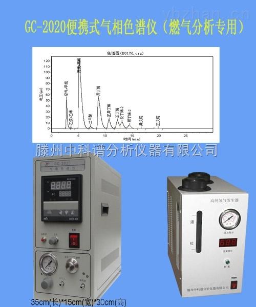 国产便携型二甲醚检测仪