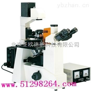 DP-88-倒置熒光顯微鏡(四色激發)/熒光顯微鏡
