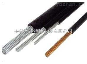 阻燃型仪表电缆ZR-YVV/ZR-YVVP/ZR-YYJVP