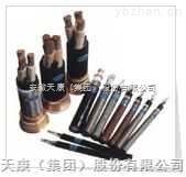 安徽天康CEF/DA CEF/SA CEF82/SA CEH92/SA 船用电力电缆