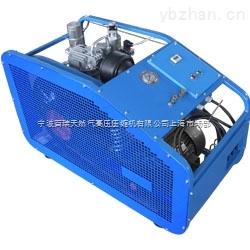 百瑞BW400德国型高压空气压缩机二代机