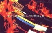 安徽天康NH-KYJVP2-22耐火屏蔽铠装型控制电缆