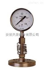 燃油壓力表