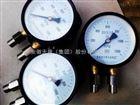 双针双管压力表YZS-102