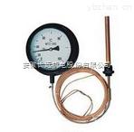 供应液体压力式温度计wtz-280