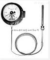 ?#19981;誛TZ-288ZT L=5M 轴向带边电接点压力式温度计
