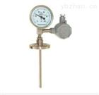 WSSE-401带热电偶温度计