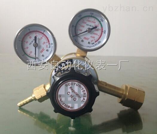 天然气单级加压器BY-111
