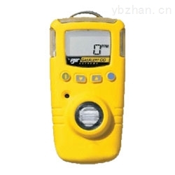 GAXT-X-加拿大BW氧气检测仪