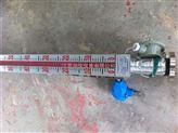 防爆電伴熱磁翻板液位計