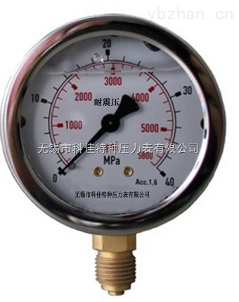 YN-50/60/100/150双刻度耐震压力表
