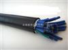 供应ZR-KJYVP48*0.75仪表电缆