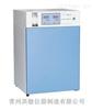 LHP-250供应实验室智能人工气候箱厂家报价