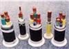 供应FF22,FF46耐高温电力缆,安徽天康股份有限公司