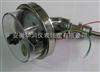 HSSPX-T/PN大轧主瓦温度计HSSPX-T/PN