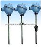 安徽天康WZPK2-136防水式铠装热电阻