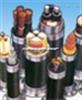 YJV  YJV223.6/6KV高压电缆