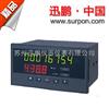 流量控制仪SPB-XSJ系列