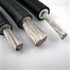 JEM铜芯乙丙绝缘氯醚护套电机绕组引接电缆(电线)