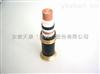 安徽天康FN-NEFR风能发电用电力电缆