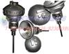PT100传感器、热电阻PT100